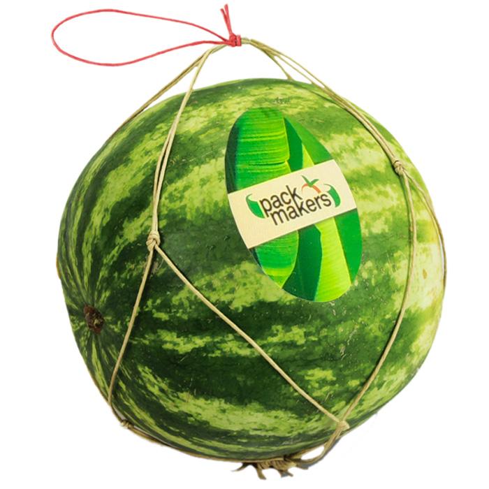 Bolsa de papel Wet strenght con ventilación para uva